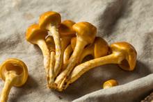 Raw Organic Nameko Mushrooms