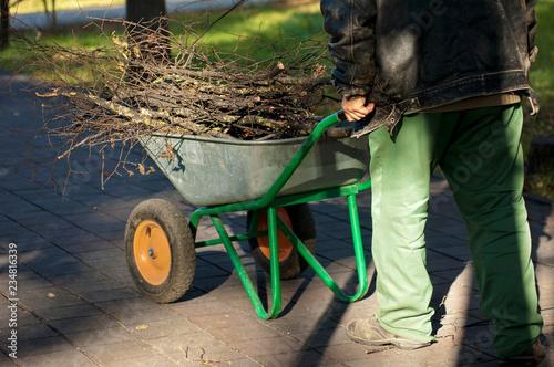 Fotografía  Sweeper pushing  a wheelbarrow full of twigs