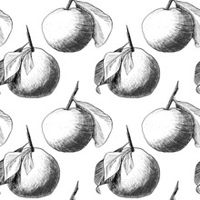 Seamless Pattern: Mandarins Or Apples, Unique Pencil Drawings Of Fruits Combined Into Beautiful Compositions