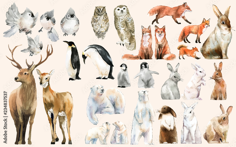 Fototapety, obrazy: Hand-drawn wildlife set watercolor style
