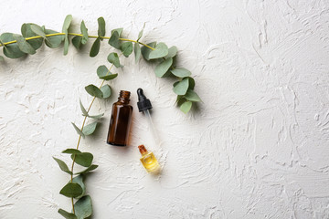 Bottles of eucalyptus essential oil on white background