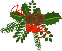 Holly Berry Branch With Pine Cone. Leaves For Traditional Ornamental Wreath From Plants For Greeting Cards For For Merry Christmas And Happy New Year.