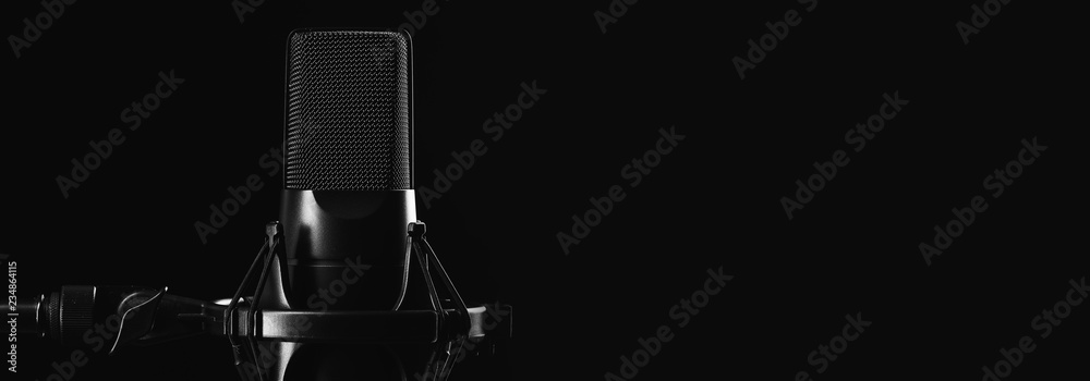 Fototapeta Professional studio microphone isolated on black