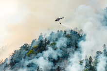 Helicopter Extinguishes Forest...