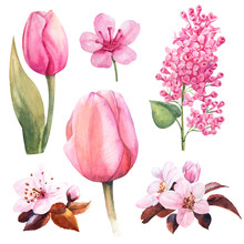 Spring Watercolor Flower Set W...