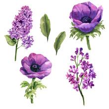 Purple Watercolor Flower Set F...