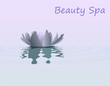 Beauty spa
