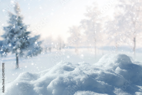 Fototapety, obrazy: Winter background of snow and snow covered trees. New year background.