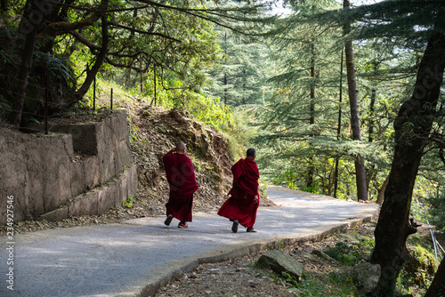 Buddhist monk walking in Dharmasala a small village in northern India Fototapeta
