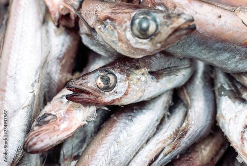 rotten fish on the market. Canvas-taulu