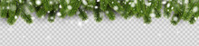 Banner With Green Fir Branches And Snow For Winter, Christmas And New Year Design.