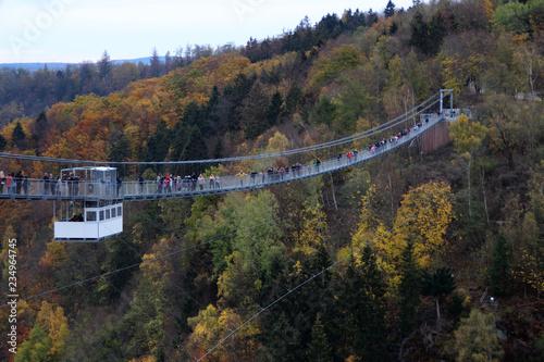 Fototapeta Eine Hängebrücke über der Rappbodetalsperre obraz na płótnie