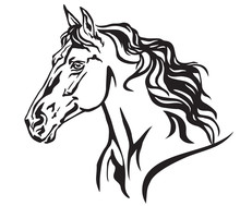Decorative Portrait Of Horse Vector Illustration 8
