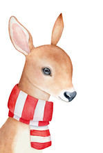 Baby Deer Wearing Warm Knitted...