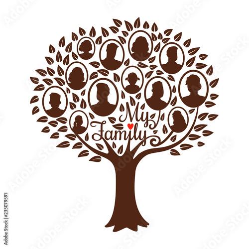 Genealogy tree Fototapet