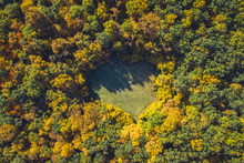 Top View Of A Forest Clearing ...