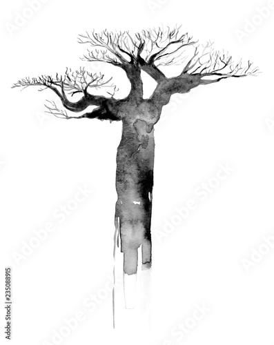 Valokuva  Watercolour Grey Baobab Tree
