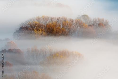 Photo Paesaggio autunnale con nebbia e foschie, Lombardia, Italia