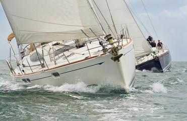 Fototapeta Sail Boats or Yachts Sailing on A Beautiful Sunny Day