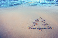 Fir Tree Drawing On The Sand N...