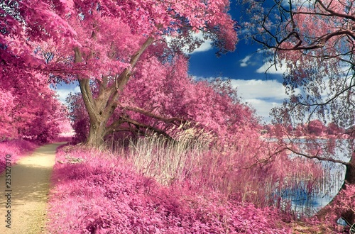 Infrared shots of beautiful landscapes Fotobehang