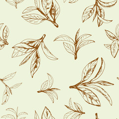 Fototapetaseamless pattern of tea, leaves and branches, hand-drawn