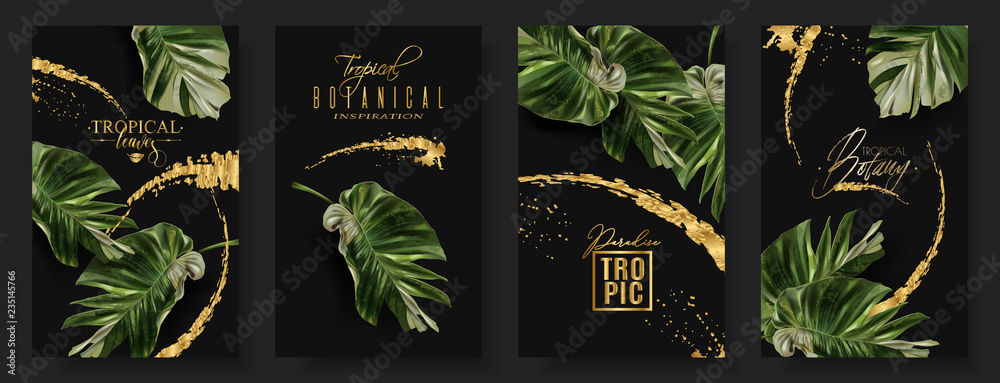 Fototapeta Vector banners set of alocasia tropic leaf