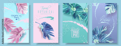 Obraz Vector banners set of alocasia tropic leaf - fototapety do salonu