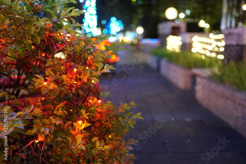 Fototapety, obrazy: Colorful led lighting is hung on the street. Image about church, prayer, neatness, and retro.