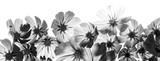 Fototapeta Kwiaty - a beautiful floral background from flower petals