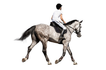 Boy riding a horse isolated on white background.