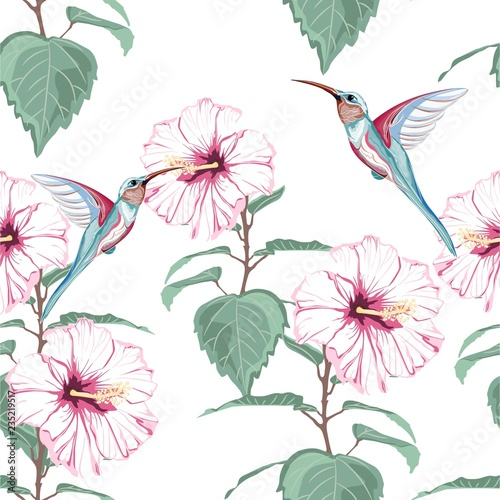 Tropical Vintage Hibiscus Plumeria Floral Green Leaves And Colibri