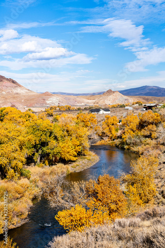 River and Trees in Fall, Nevada