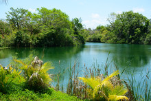 MIAMI, FL, USA - APRIL 29, 201...