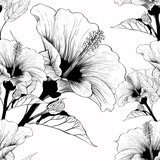 Vector. Hibiscus - flowers and buds. Seamless background pattern. Perfume and cosmetic plants. Wallpaper. Decorative composition. Use printed materials, signs, posters, postcards, packaging. - 235256780