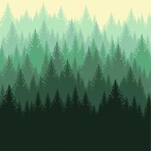 Фон из леса