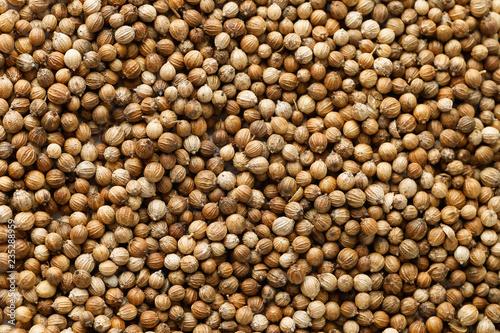 Fotobehang Kruiderij Coriander seeds