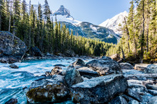 Kicking Horse Rivers With Paget Peak In The Background, Yoho National Park, British Columbia, Canada