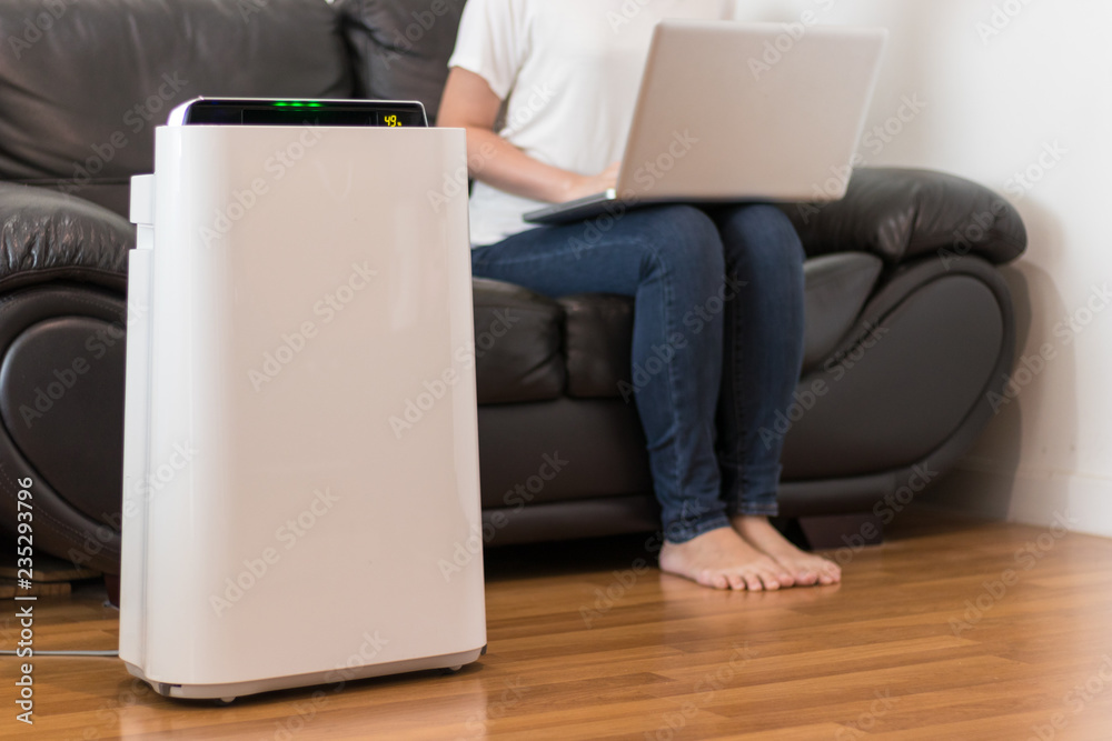 Fototapeta Air purifier in a living room, woman working with laptop with filter for clean room