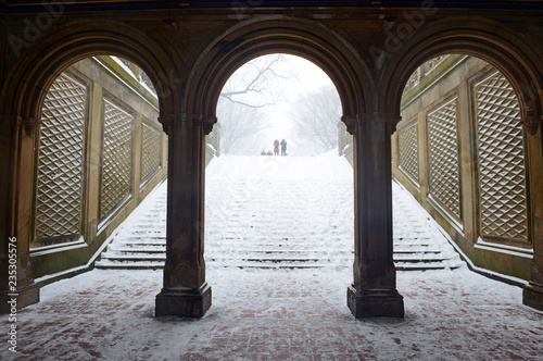 Foto op Aluminium Oude gebouw Central Park in Manhattan New York during middle of snowstorm with snow falling