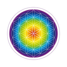 Colorful Flower Of Life Geomet...