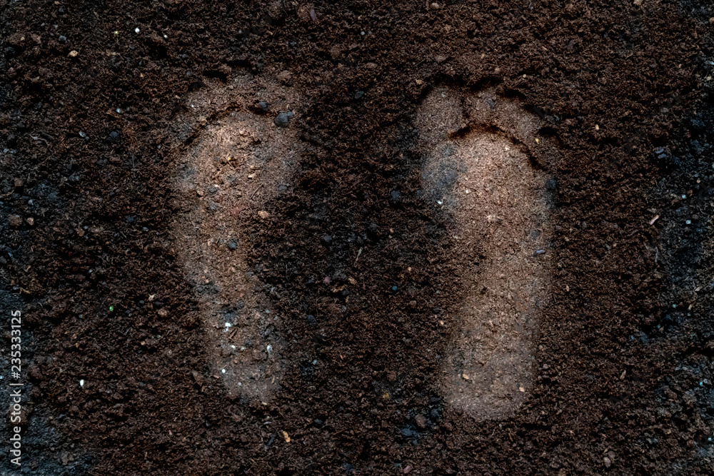 Fototapeta human bare foot step print on the soil ground f