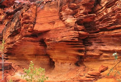 Foto auf AluDibond Koralle falaise rouge austraie