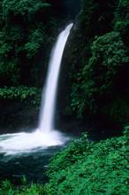 La Fortuna Waterfall In The Rainforest Of Costa Rica