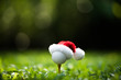 Festive-looking golf ball on tee with Santa Claus' hat on top for holiday season on golf course background