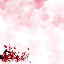Watercolor Sakura Frame. Backg...