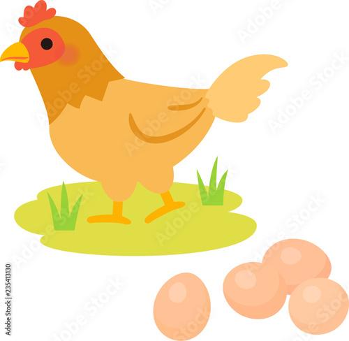 Fotografiet 放し飼いの鶏と卵