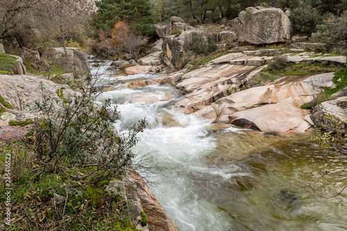 Foto op Aluminium Bos rivier Water torrent of the Manzanares river in the Pedriza area of Madrid