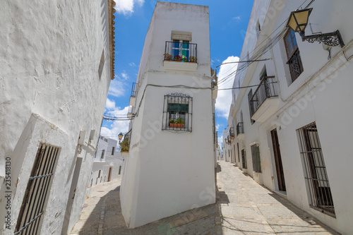 Fotografie, Obraz  bifurcation of narrow pedestrian streets in typical white houses Andalusian vill