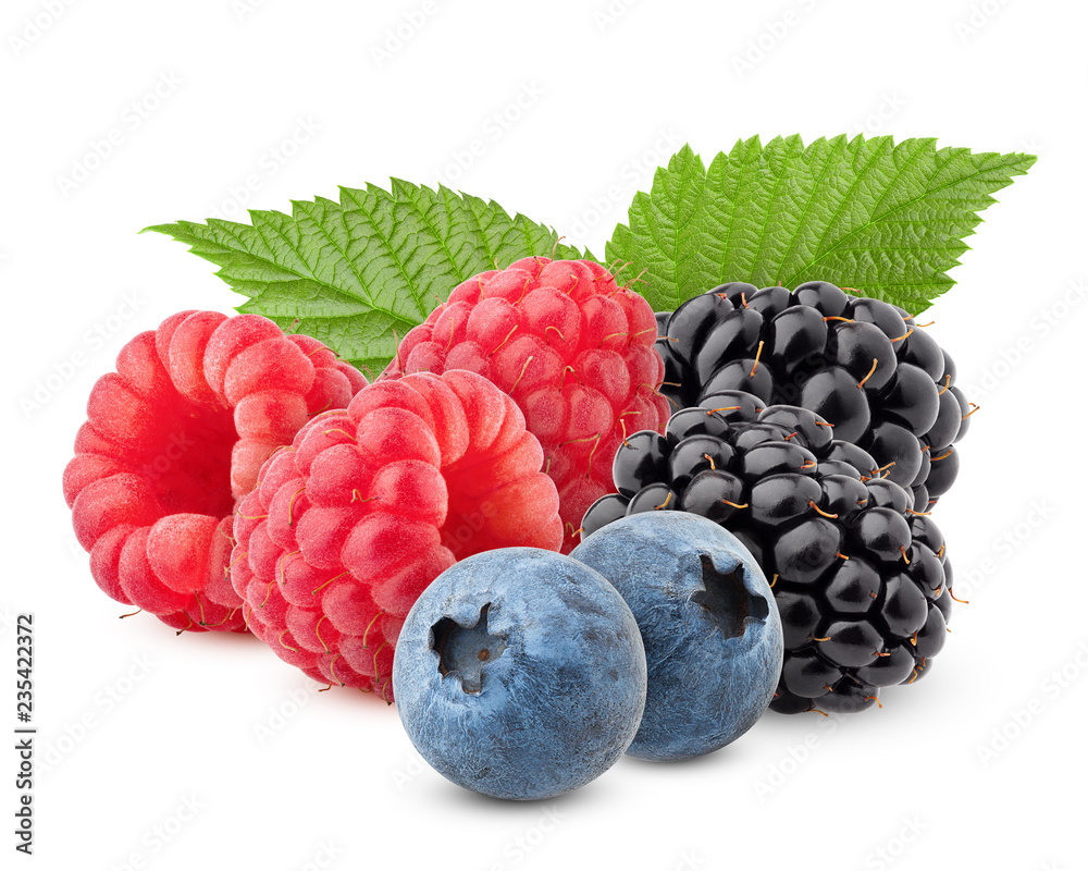 Fototapeta wild berries mix, raspberry, blueberries, blackberries isolated on white background, clipping path, full depth of field